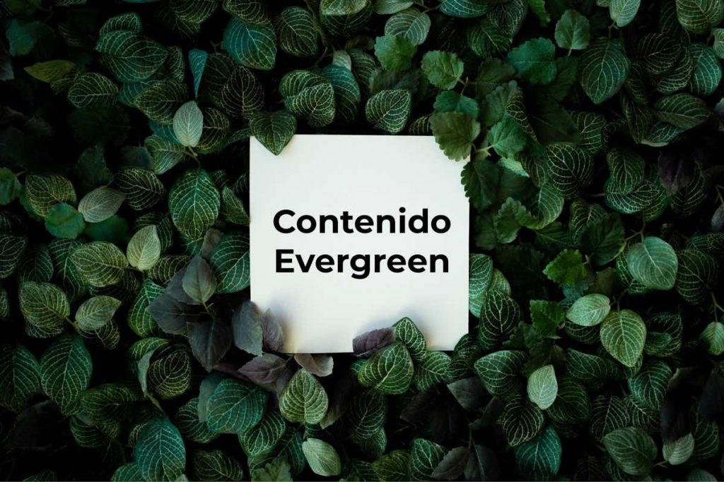"""Contenido evergreen"" entre hojas verdes"